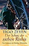 Der Schatz der sieben Rishis: Das Geheimnis der Palmblatt-Bibliotheken - Tigo Zeyen