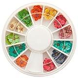 Nailart Trocken-Blumen - echte getrocknete Blüten - ca. 40 Stück in 12 Farben im Rondell