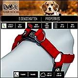 Hundegeschirr Step-In aus Premium-Nylon verschiedene Farben und Groessen XXS, XS, S, M, L, XL: Brustgeschirr, Laufgeschirr, Fuehrgeschirr, verstellbar, Zugentlastung, stabil, bequem, weich, farbig, fuer große und kleine Hund (Leine und Halsband separat erhaeltlich) (Farbe Schwarz, Größe XS – 1,0 x 32-44 cm) - 4