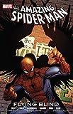 Image de Spider-Man: Flying Blind