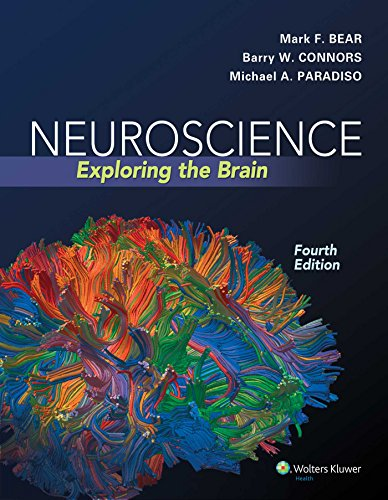 Neuroscience: Exploring the Brain - Flashcard Ds