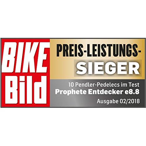 Prophete ENTDECKER e8.8 Alu-Trekking E-Bike