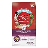 Purina ONE SmartBlend Dry Dog Food, Healthy Puppy Formula, 8-Pound Bag by Purina ONE
