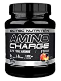 SCITEC NUTRITION Amino Charge, 570g, Geschmack:Pfirsich