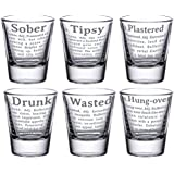 YaYa Cafe Birthday Party Gifts Glasses Engraved Drunk And Wasted Tequila, Vodka Shot Glasses Set Of 6