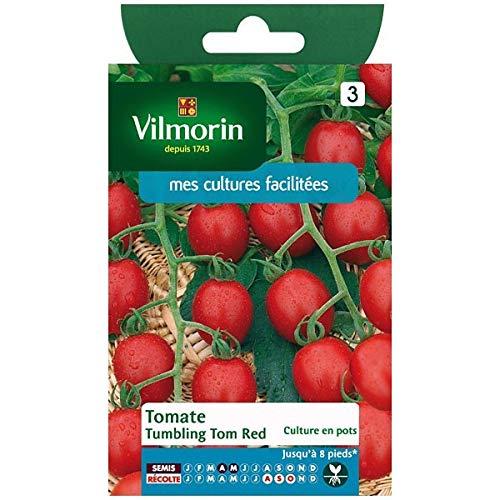 Vilmorin - Sachet graines Tomate tumbling Tom Red