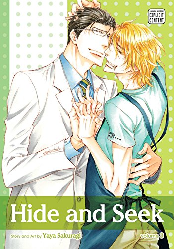 Hide and Seek, Vol. 3 Cover Image