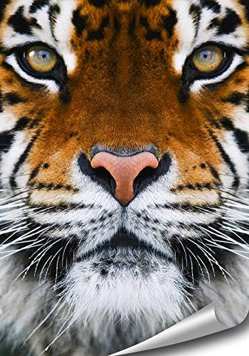 ARTBAY Mystischer Tiger - Tier Poster XL - 70 x 100 cm  Premium Qualität  Hochauflösende Wanddekoration