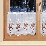 SeGaTeX home fashion Weihnachts-Scheibengardine Stern und Apfel Wintergardine Plauener Stickerei