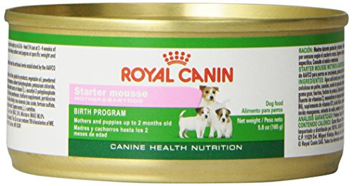 Royal Canin Canine Health Nutrition Starter Mousse Canned Dog Food , 5.8...