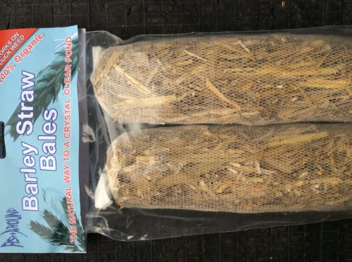 Fish Around Algae Clear, Pond Barley Straw With Added Lavender, The Natural Way to a clear pond 2