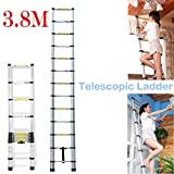 Escalera telescópica plegable de aluminio, multiusos, 13 peldaños (3,8m)