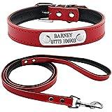 Berry personalizada tapizado de piel ajustable mascota perro Collar y correa Set