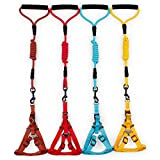 #3: Dog Harness & Leads, Pets Empire Durable Strong Nylon Dog Cat Pet Lead Leash Rope with Comfortable Foamed Handle and Adjustable No Pull Dog Harness Set - Great for Walking, Training, Hiking and Climbing For Small Puppy and Cat ( Color May Vary)
