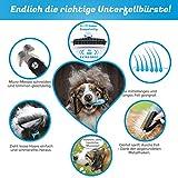 Bluepet Hundebürste / Unterfellbürste – Antiallergisch, befreie deinen Liebling von Unterwolle – Innovatives Design – Entfilzen und Trimmen zugleich für optimale Fellpflege - 5