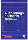 Brunnen 1042572 Berichtsblock Ausbildung / Ausbildungsnachweisblock (A4, 28 Blatt, gelocht, 1 Woche je Seite)