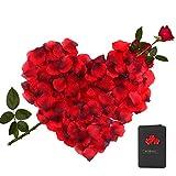 3000 Stück Rosenblätter Rosenblüten + 1 Stück Grußkarte mit Klein Rosen, Blumen Künstlich Romantische Valentinstag Hochzeit Deko Set für Vorschlag Geburtstag Party Hochzeit Dekoration (Rot)