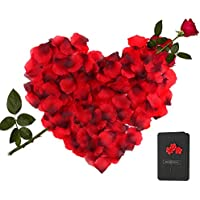 3000 Piezas Pétalos de Rosa + 1 Piezas Tarjeta de Felicitación, Hermosos Rojo Flores de Rose, Tarjeta de Boda con Rose para el banquete de boda y la atmósfera romántica - Perfecta Día de San Valentín & Bodas Decoración
