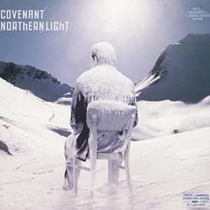 Northern Light [Vinyl LP]