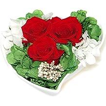 Suchergebnis Auf Amazonde Für Rote Rosen Deko Rosen Te Amo