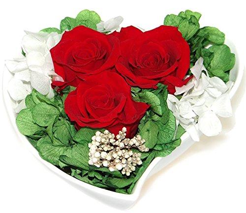 Rosen-te-amo Geschenk für sie Konservierte rote Rosen, echte Blumen-Strauß im Vase mit Herz-Form - Das Muttertags Gescnk (Glas Herz Rot Vase)