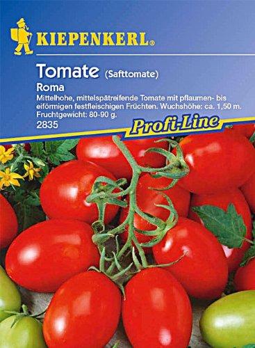 tomaten-eiertomaten-roma-safttomate