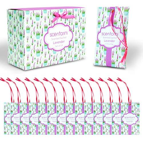 SCENTORINI Sachets Parfumés Lavande pour Tiroirs et Placards, 10g x 14 sachets
