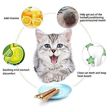 MAIYADUO 20 PCS Herbe à chat jouet pour chat, clés chat Dental Chew, jouet pour chat, participate une Soin des dents et naturelle pour aider à dents Bouche Odeurs et pierre