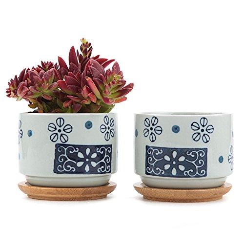 t4u-75cm-ceramic-japanese-style-serial-no1-sucuulent-plant-pot-cactus-plant-pot-flower-pot-container