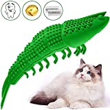 Dymic Cat Toys Interactive Kitten Treat Toys Catnip Toy Cat Stuff Toothbrush Teeth Cleaning Chew Toy for Indoor Cats Interactive Boredom Shape Crayfish 100% Natural Rubber&Catnip (Green)