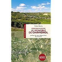 Le vignoble de Chavignol: Voyage dans un paysage