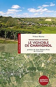 Le vignoble de Chavignol : Voyage dans un paysage par Thibaut Boulay