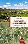 Le vignoble de Chavignol : Voyage dans un paysage