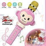 Karaoke Mikrophon
