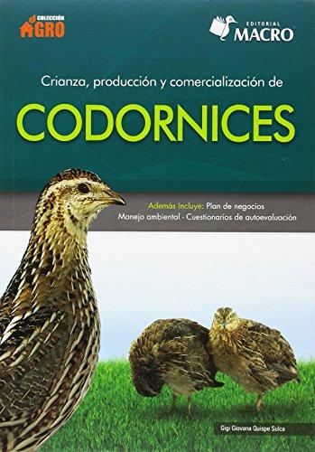 Crianza, Producción y Comercialización de codornices por Gigi Quispe Sulca