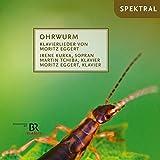 Ohrwurm-Klavierlieder [Import allemand]