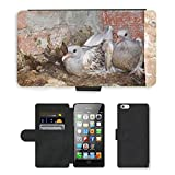 5s Case Iphone Pigeon - Best Reviews Guide