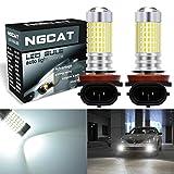 LED-Glühbirnen von Ngcat, 2 Stück, 1500 Lumen, SMD-3014-Chipsatz mit 144 LEDs, H11/H9/H8, superhell mit Linse, für Tagfahrlicht, Blinker, Rückfahrlicht, Rücklicht, Xenon-Weiß, 12-24 V