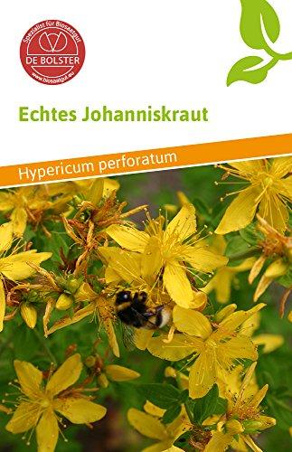 De Bolster 17470 Echtes Johanniskraut (Bio-Johanniskrautsamen)