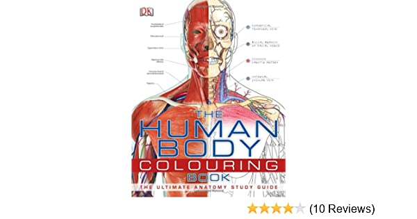 The Human Body Colouring Book: Amazon.co.uk: DK: 9781405371278: Books