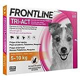 Merial - Frontline Tri-Act Antiparasitario Externo - 362 - 5-10 Kg. 6 Pipetas