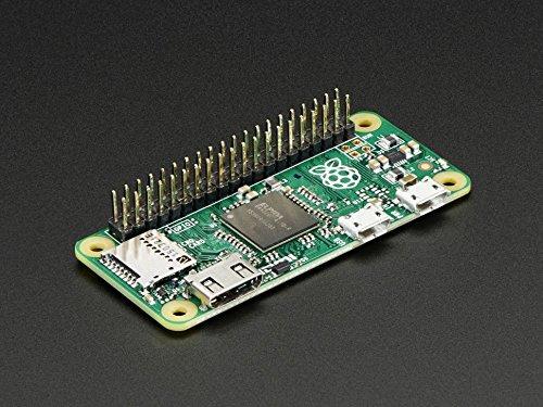 """Adafruit Break-Away 0.1"""" 2x20-pin Strip Dual Male Header [ADA2822]"""