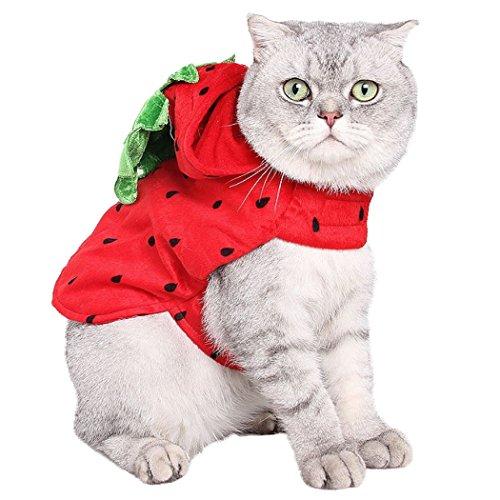 Imagen de ropa de gato, legendog navidad mascota bon capucha fresa decorativa ropa para mascotas disfraz de navidad para perro gato