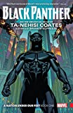 Black Panther: A Nation Under Our Feet Vol. 1 (Black Panther (2016-))