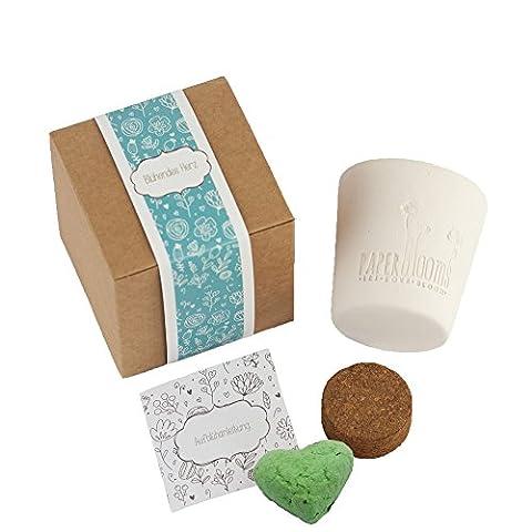 Paperblooms Geschenk-Box