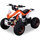 Kinder Quad S-14 125 cc Motor Miniquad 125 ccm orange/weiß Speedy