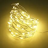 Fairy Lights,20 LED Micro Indoor Battery Operated Fairy String Lights on Copper Wire,Twinkle lights (Warm White) .