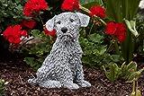 Statue chien Terrier, au gel et aux intempéries-massif en pierre …