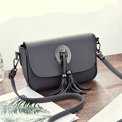 HQYSS Borse donna Cuoio Sweet Lady Tracolla Messenger solido di colore casuale fresco in rilievo nappe Bag Decorato , deep gray deep gray