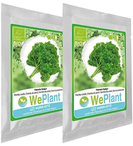 BIO Petersilie Pflanzen-Samen Set - indoor/outdoor